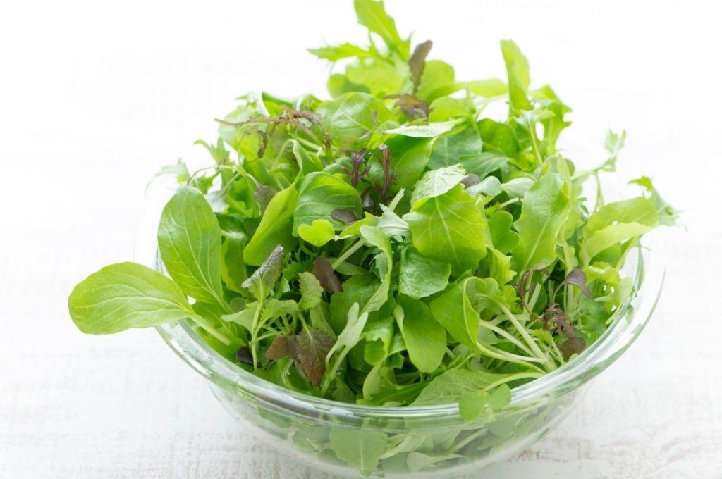 低糖質痩せやすい食べ物 葉野菜